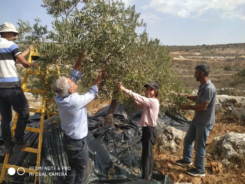 'You Are not Alone': Celebrating the harvest season despite Israeli repression